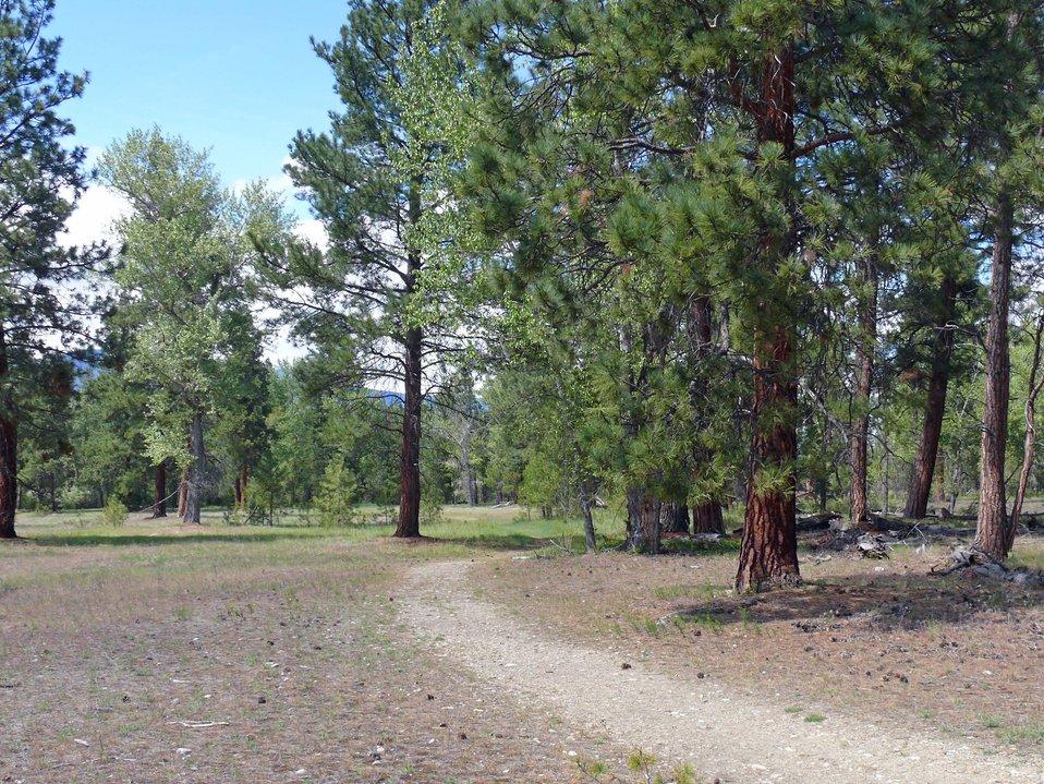 Wildlife Viewing Area Trail2, Lee Metcalf Refuge