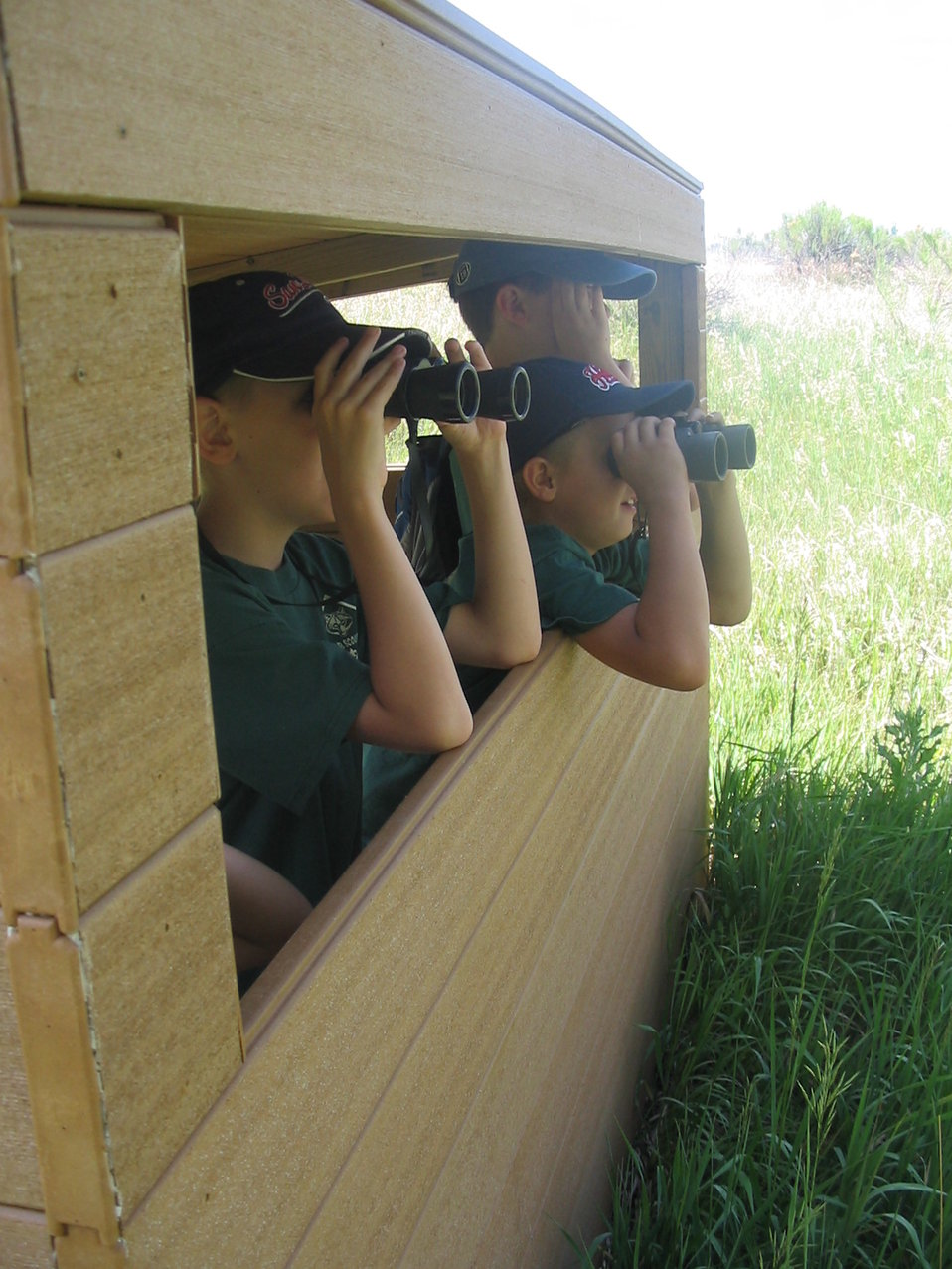 Wildlife Viewing Scouts