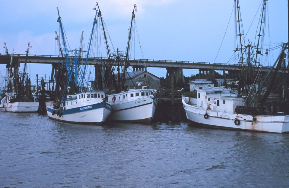 Shrimpers tied up at the Lazaretto Creek Bridge