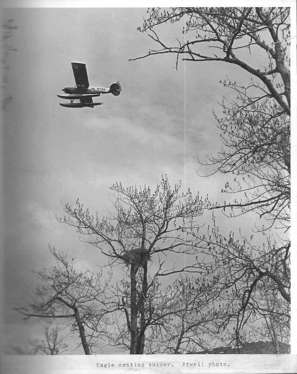 (1972) Eagle Nest Fly-By