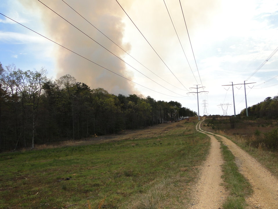 Smoke Plume away from Powerline