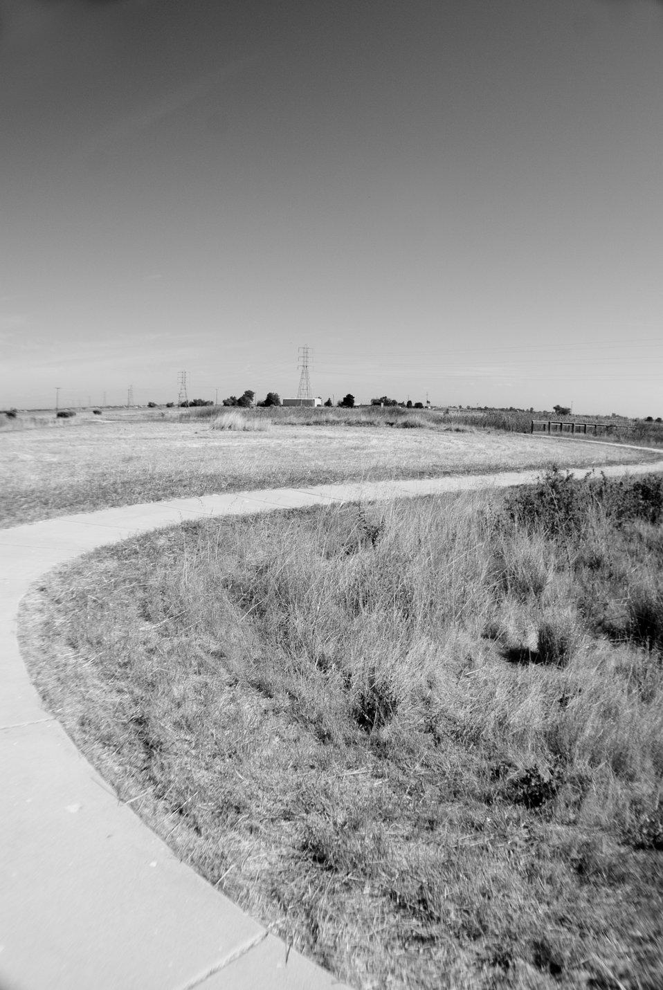 Stone Lakes NWR 03