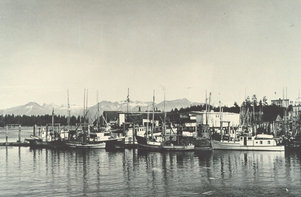 Commercial fishing boats at Petersburg.  F&WS 12,227.