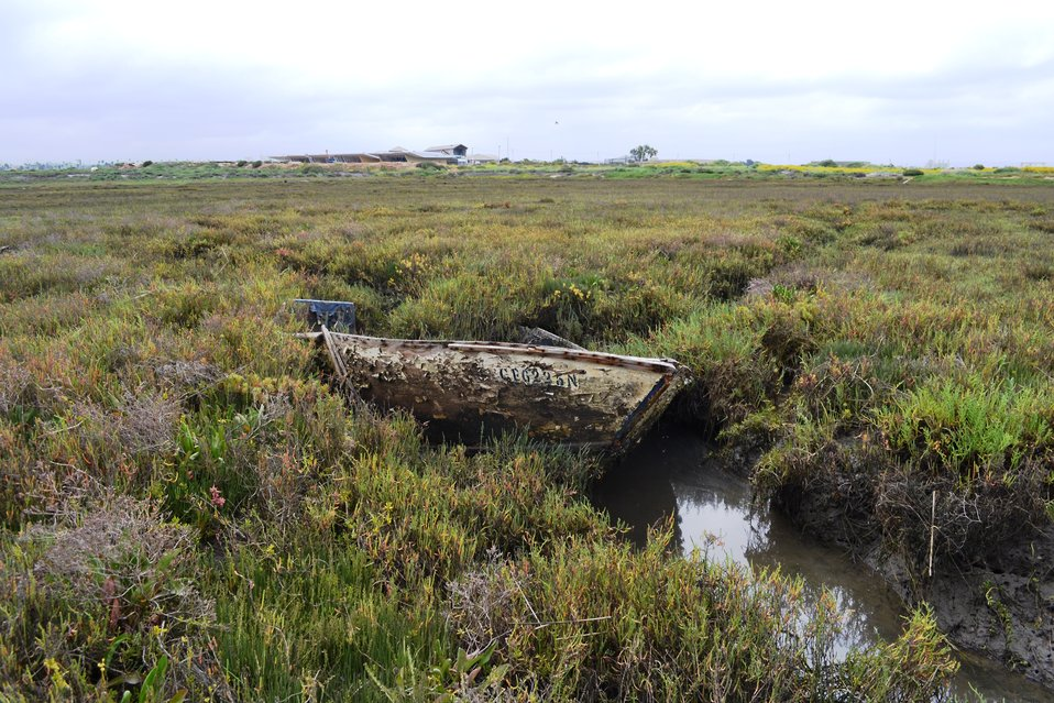 Stranded boat on Sweetwater Marsh