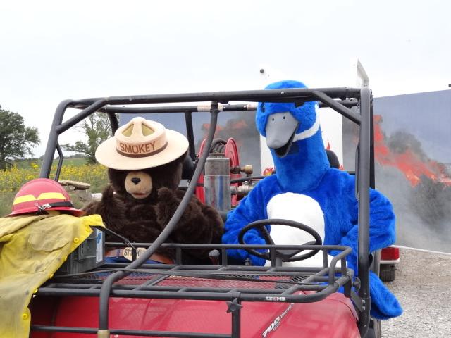 Smokey Bear and the Blue Goose