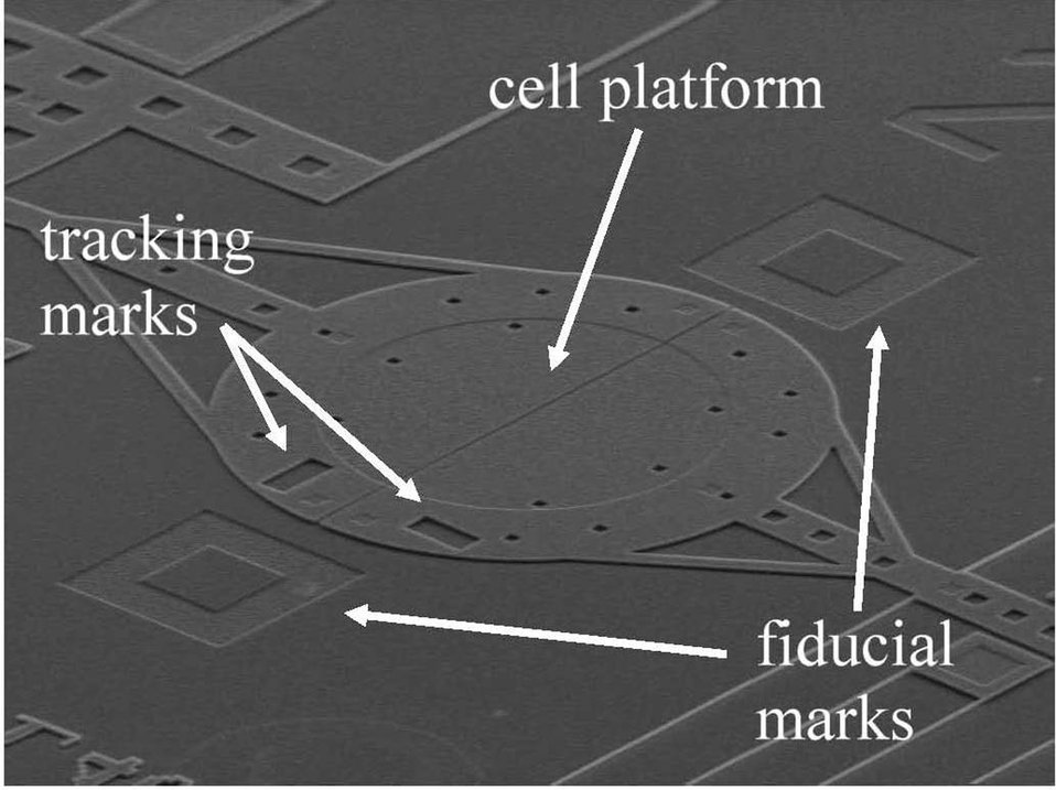 Microelectromechanical system (MEMS)