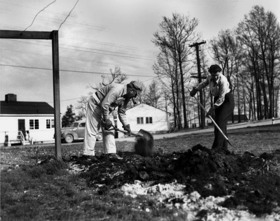 Victory Garden Oak Ridge
