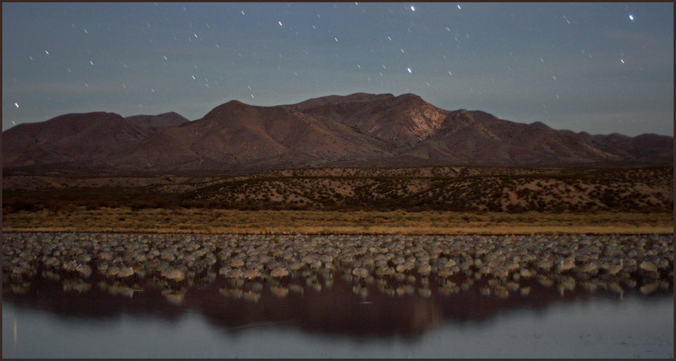 Bosque del Apache at night