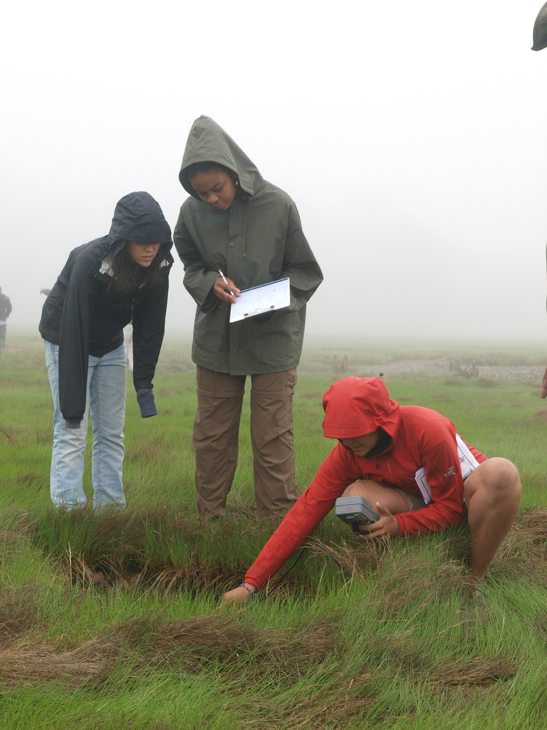 CIP students in the field