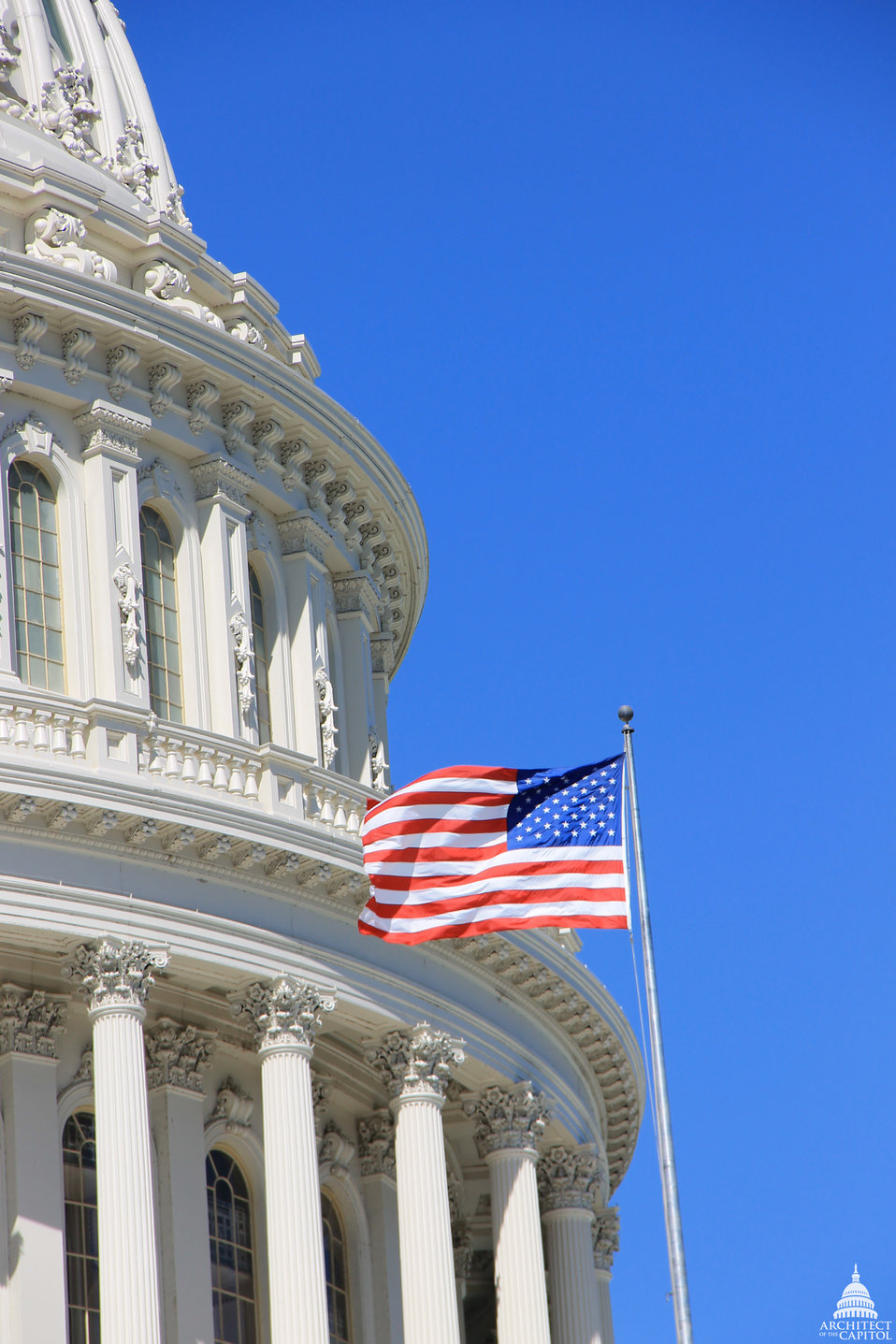 Flag Flying on the U.S. Capitol