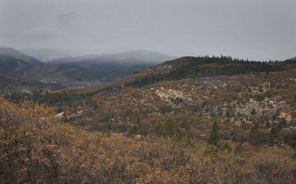 Colestin Valley Restoration Area