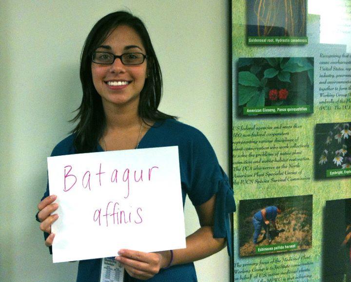 Marina Askari, 'Batagur affinis,' Credit: USFWS