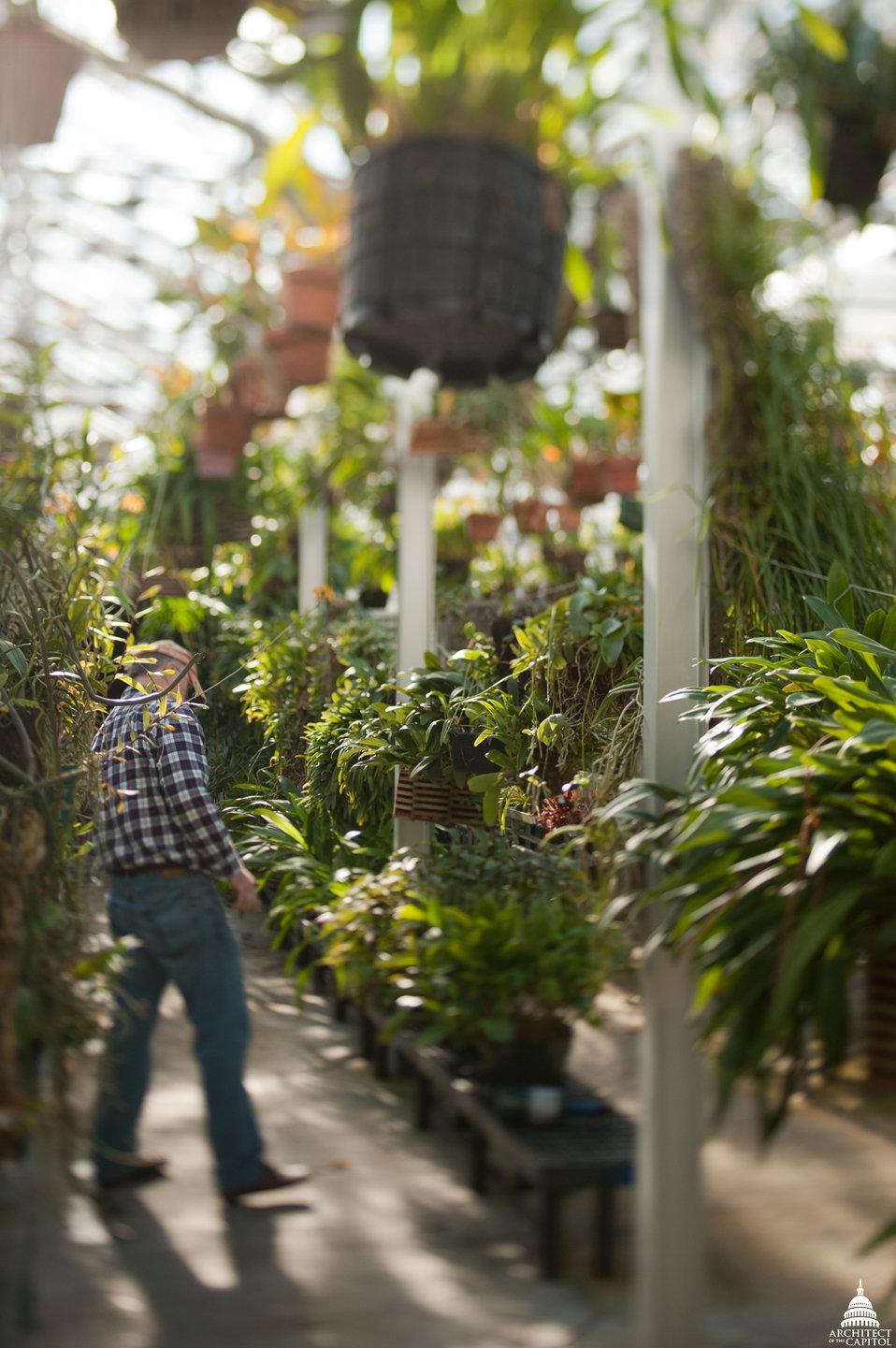 U.S. Botanic Garden Production Facility