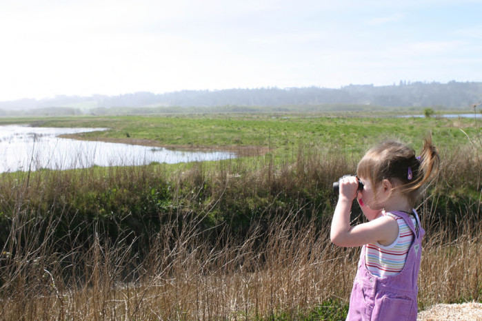 Two-year-old Birder