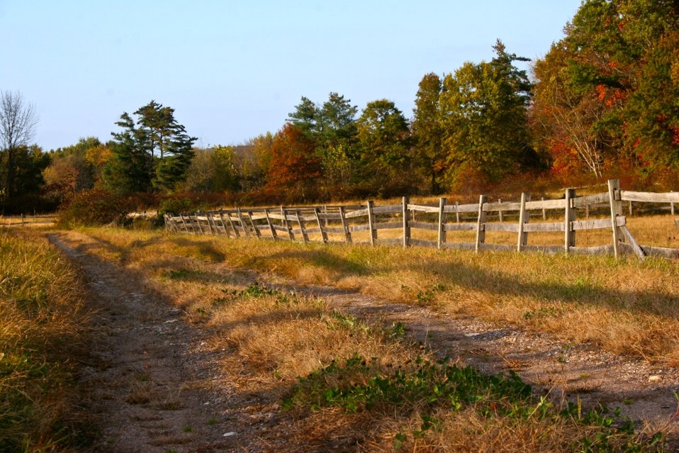 Photo of the Week: Fenced Pathway, Hadley, MA