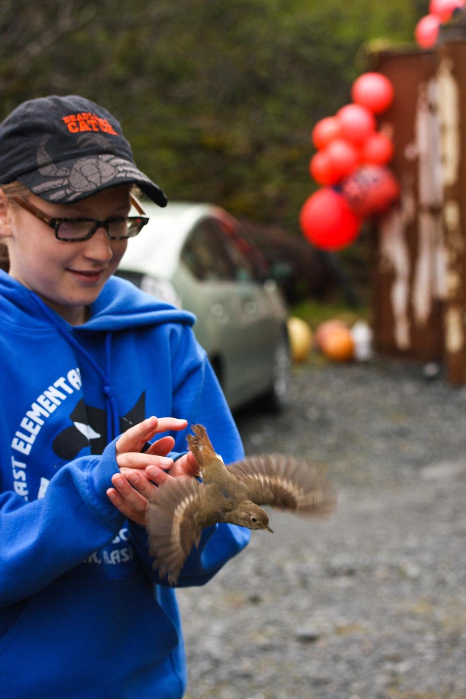 Volunteer helper Nia Pristas releases a bird after banding