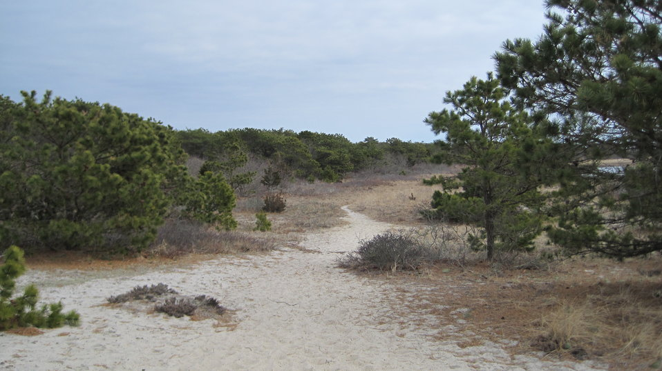 Monomoy National Wildlife Refuge