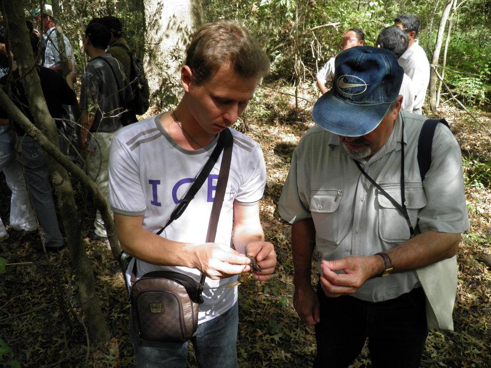 Examining Biota