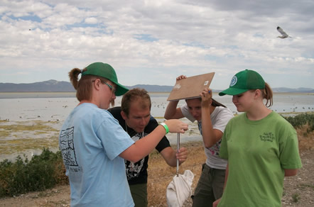 Students and YCC crew weigh California gull