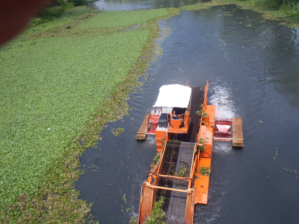 Mechanical Harvesting of Water Chestnut in 2010