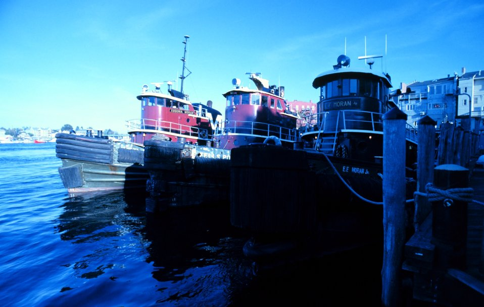 Portsmouth Harbor tugboats.