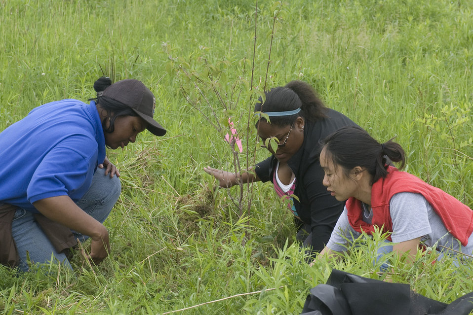 Service employee and students planting trees