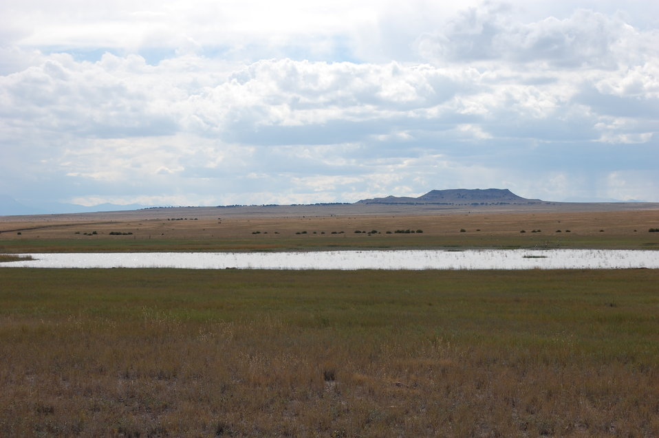 Restored Playa Basin in SE Colorado
