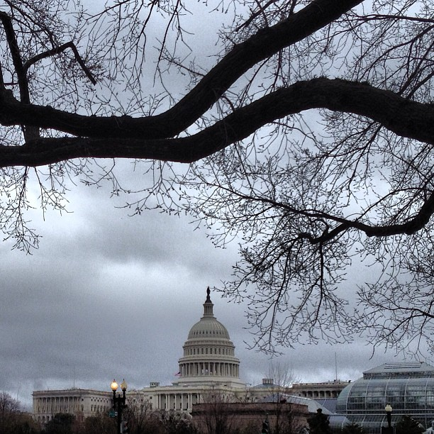 Rainy morning on Capitol Hill. #dc