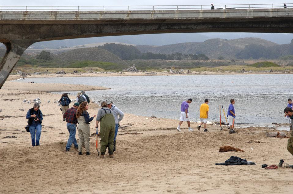 Pescadero Breach 12