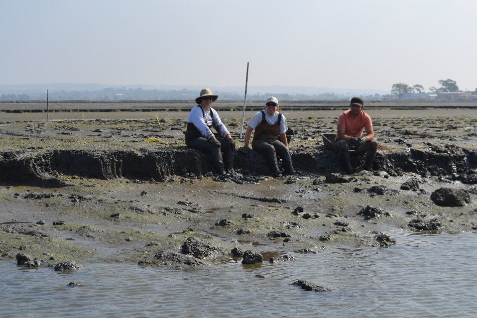 Muddy restoration ecologists