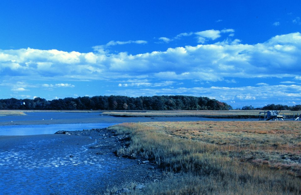 A view of wetlands at Great Bay National Estuarine Research Reserve.
