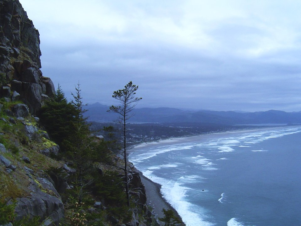 View of Manzanita