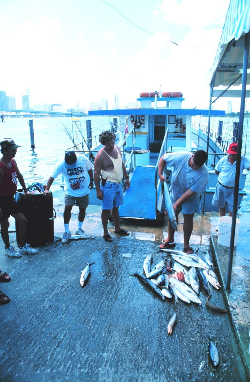 King and Spanish mackerel being offloaded from a charter boat