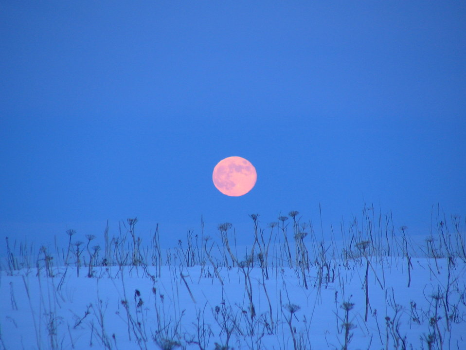 Moonrise at Izembek