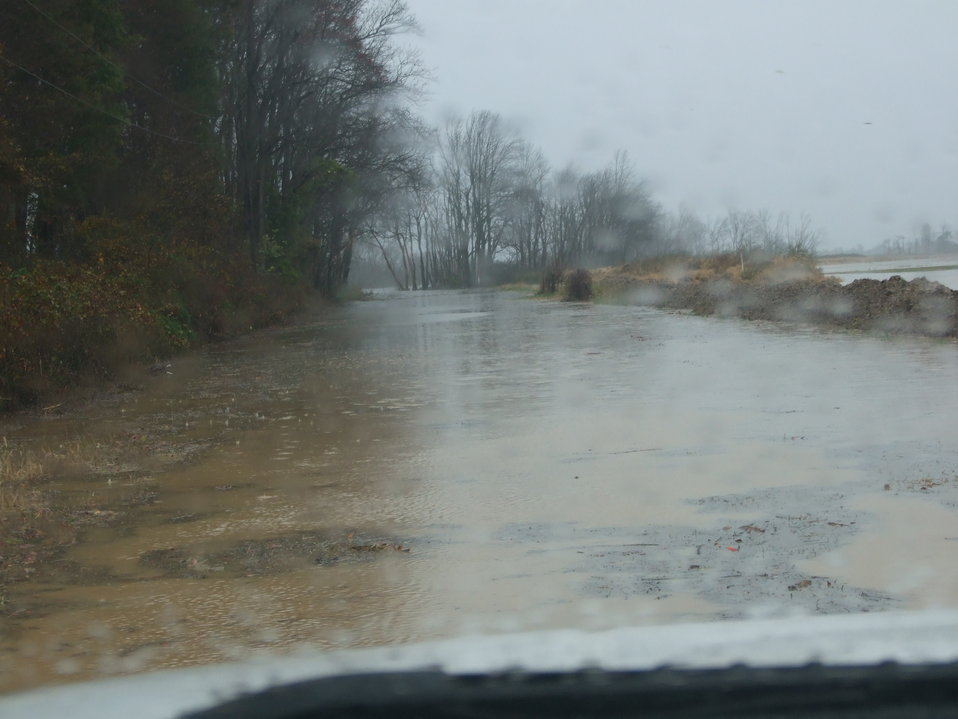 Flooding at Prime Hook National Wildlife Refuge (DE)