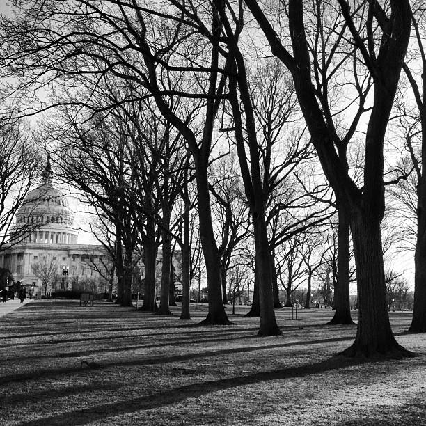 Evening in Senate Park.