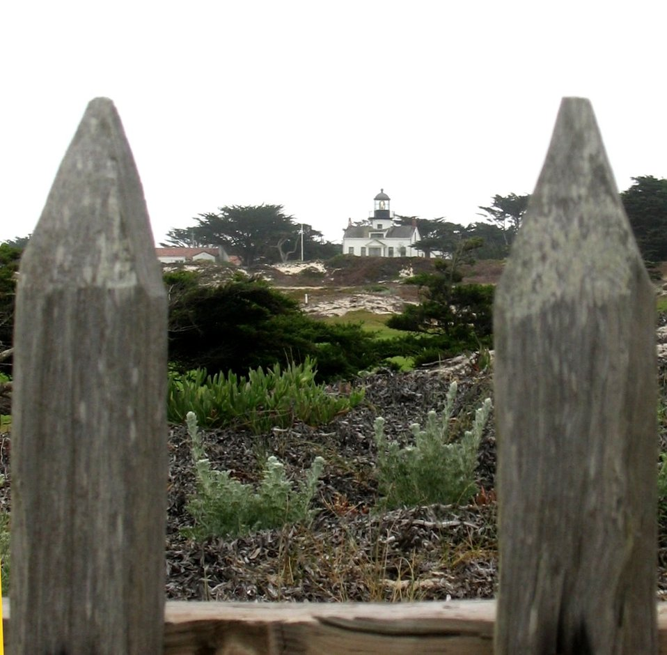 The Point Pinos Lighthouse bracketed between fence posts on the Asilomar Dunes.