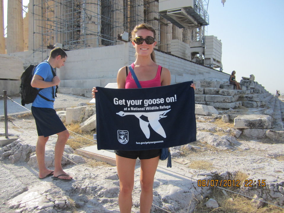 Get Your Goose On! - Parthenon Style!