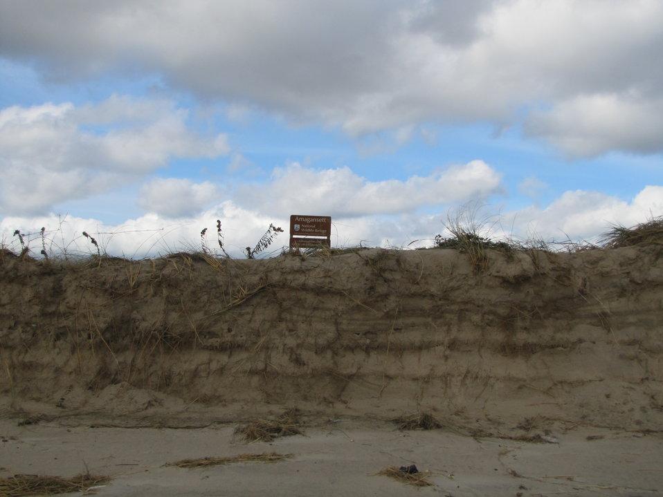 Dune damage at Amagansett National Wildlife Refuge (NY)