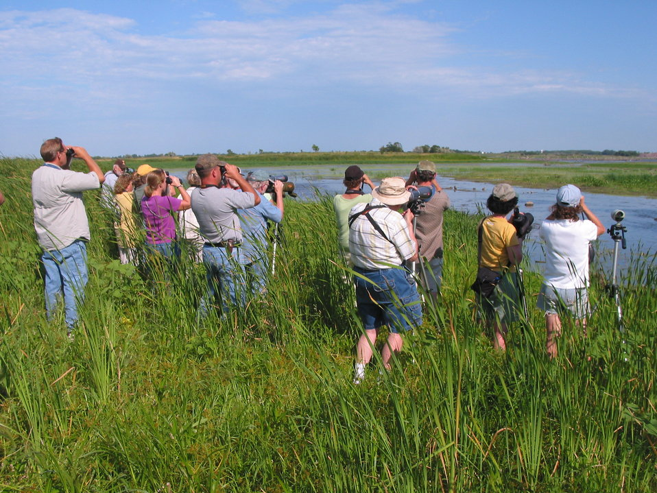 Birding on the Prairie