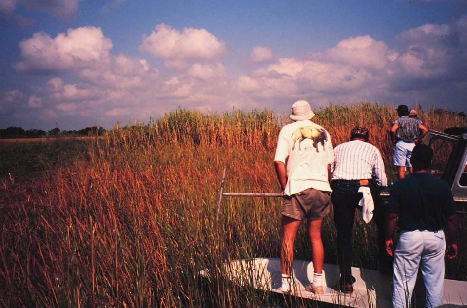 Wetland scientists evaluating potential marsh restoration project.
