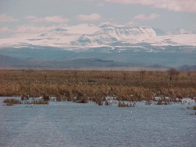 malheur refuge, Steens over Wetlands