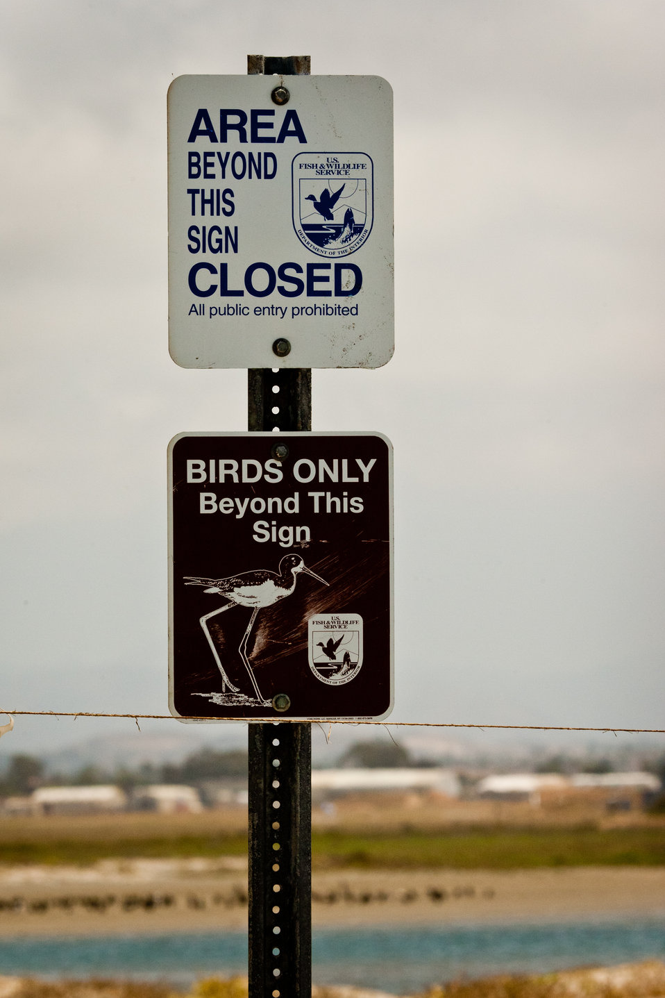 Birds only!