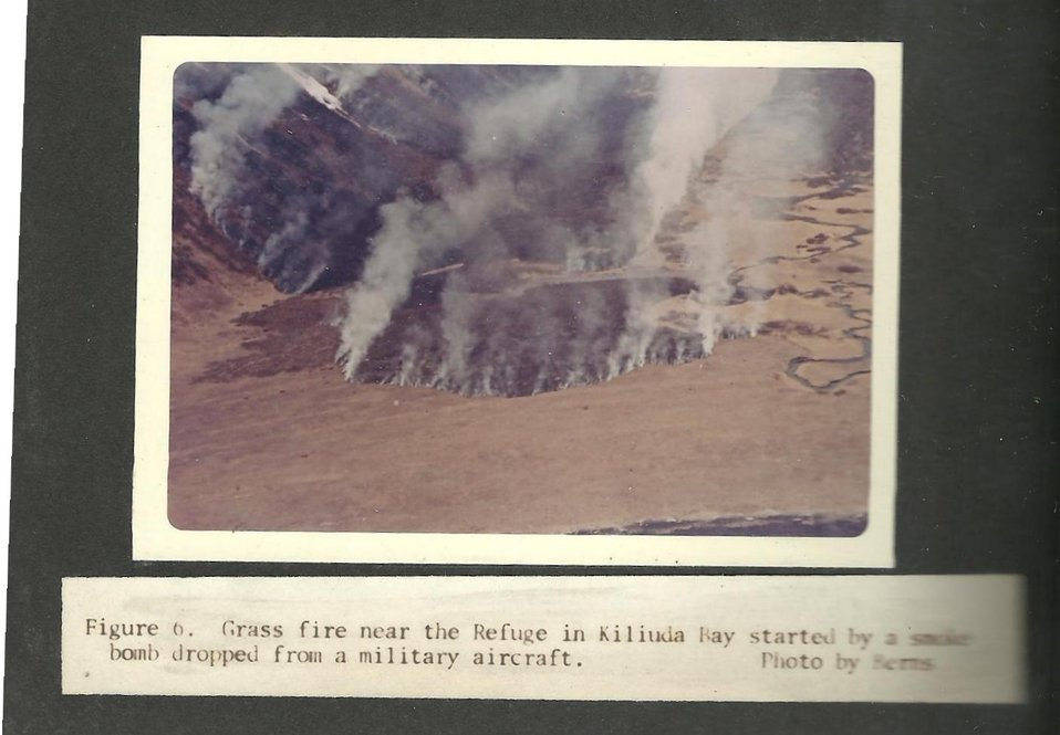 (1965) Grass Fire