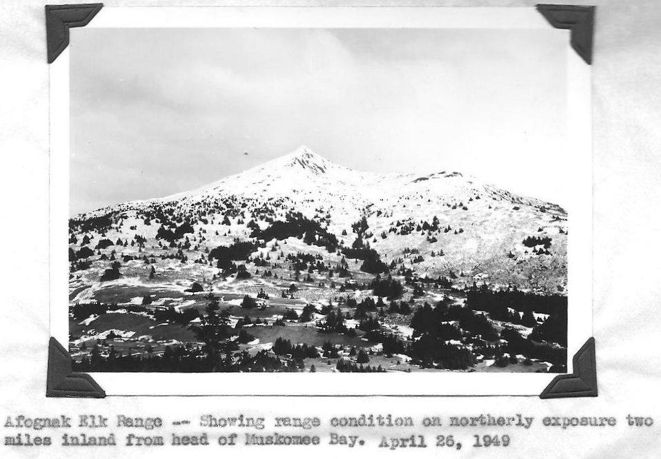 (1949) Afognak Elk Range