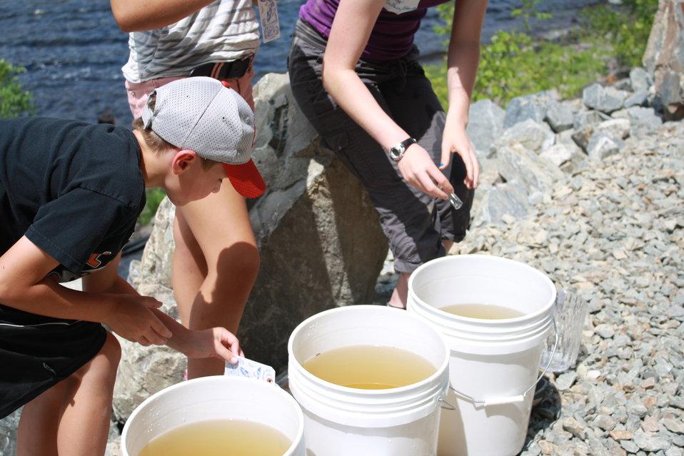 Veazie Dam Removal