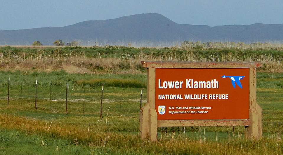 Lower Klamath NWR Entrance