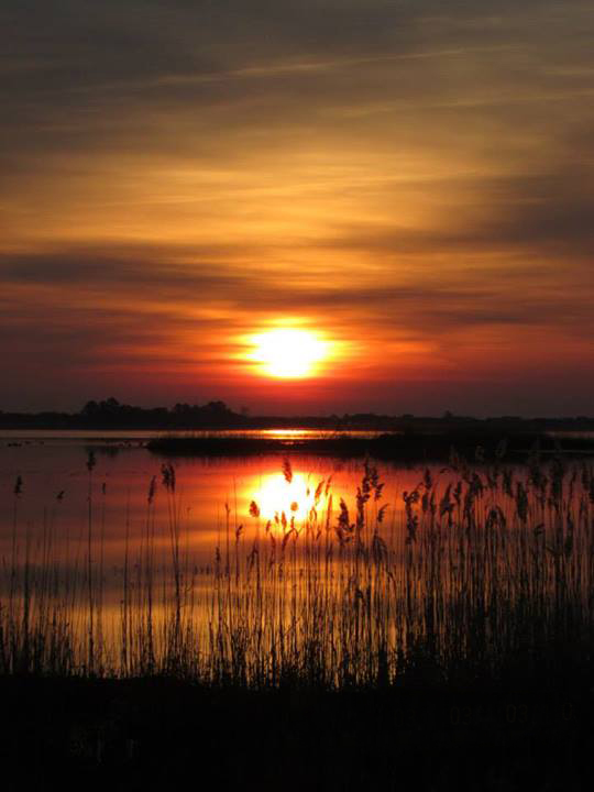 Photo of the Week - Happy 111th Birthday to the National Wildlife Refuge System