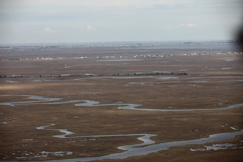 E.B. Forsythe National Wildlife Refuge (NJ)