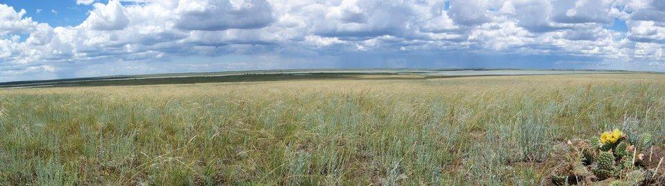 Bowdoin NWR Prairie